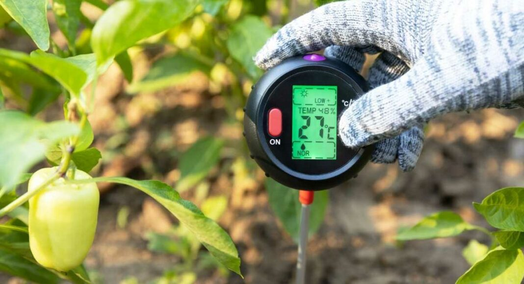 Best Soil Thermometers