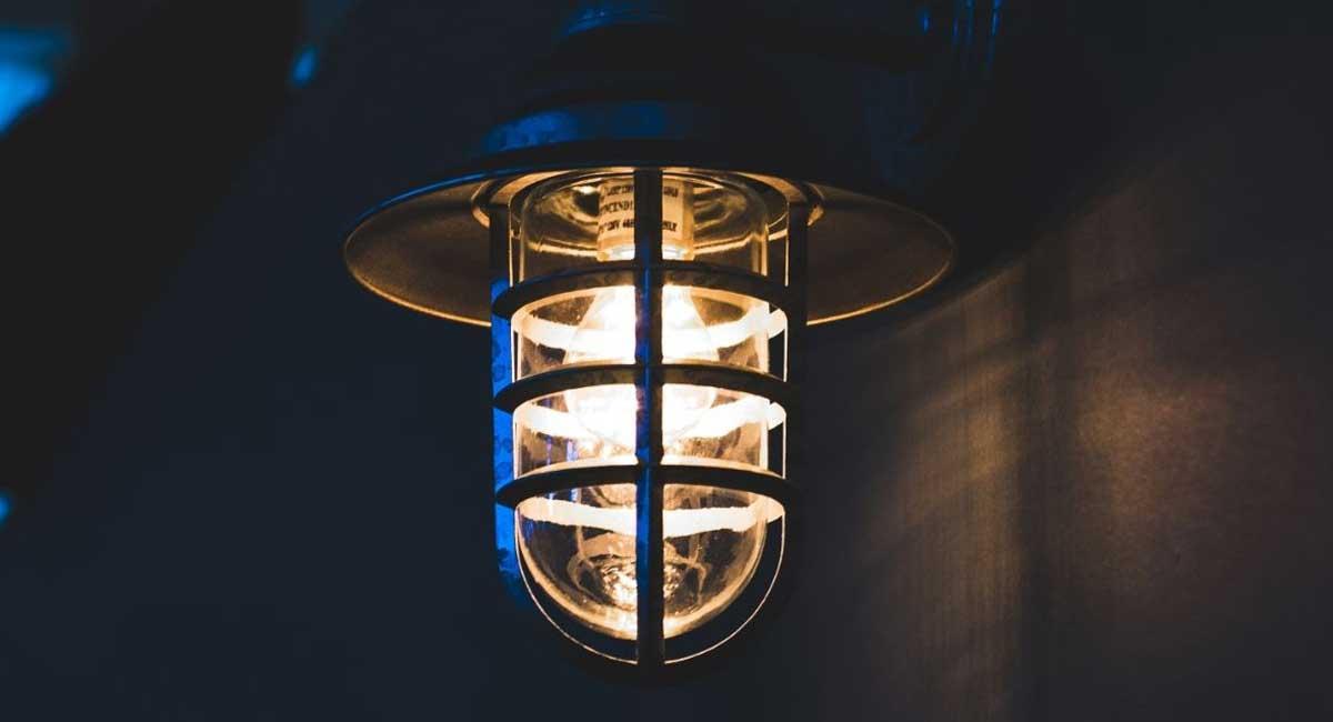 The 5 Best HPS Bulbs